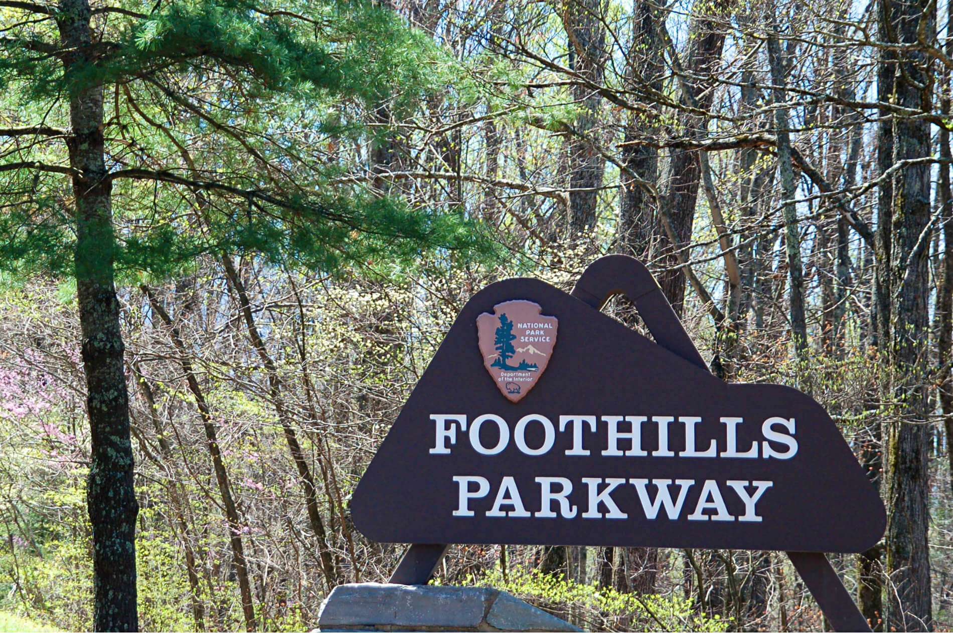 "Brown wooden Park sign ""Foothills Parkway"" in midst of greentrees and grass"