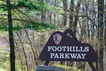 """Brown wooden Park sign """"Foothills Parkway"""" in midst of greentrees and grass"""