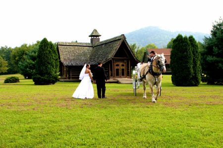 Wedding bride and groom standing next to white carriage with tuxedoed driver and tan horse
