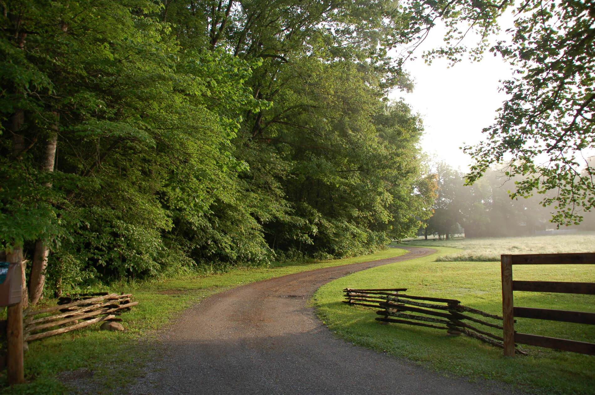 Picture of winding dirt road with green grass and trees on the left and fencing at the entrance.